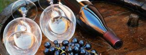 Kiana-Wine-Dinner